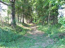 Path in Spencer County
